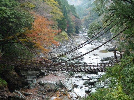 Miyoshi, Japão: かずら橋