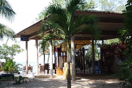 Whistling Bird Resort: our little bar