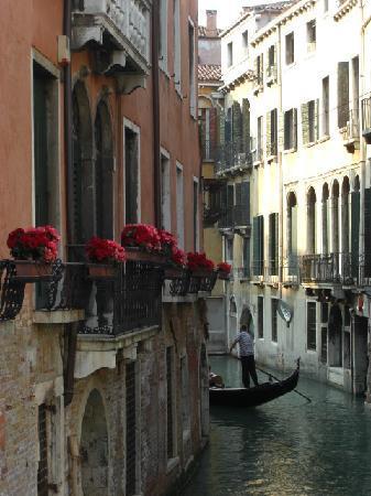 B&B Palazzo Minelli: the view from Minelli window