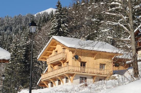 TG Ski Chalets Morzine: Petit Amis