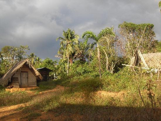 ซูรินาเม: in een van de dorpen