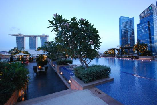 Mini bar picture of the fullerton bay hotel singapore - Rooftop swimming pool in singapore ...