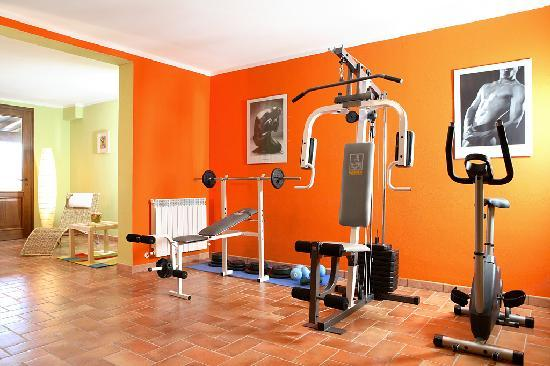 Cottage Degli Ulivi: a part of the gym
