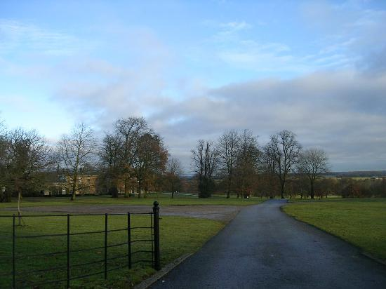 Self Catering Breaks at Rudding Park: Rudding estate