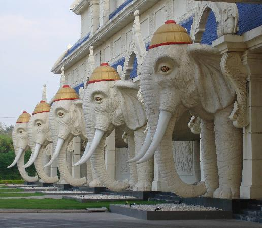 Savannakhet, Laos: More Elephants