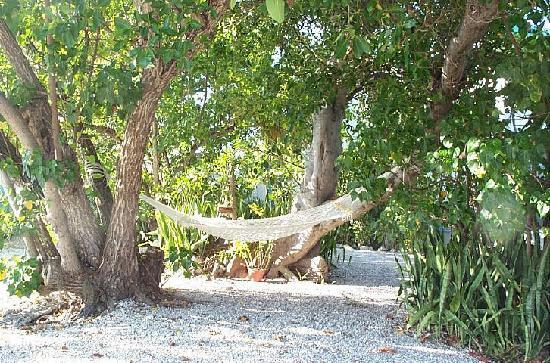 Captain Pip's Marina & Hideaway: Sometimes it take all day to do nothing -- like relaxing in one of our hammocks.