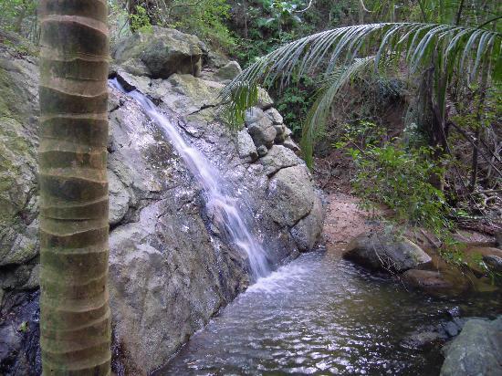 Oreanda: Beautiful Waterfall near Casita