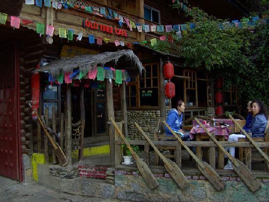 Old Tree Hotel: Cafe und Restaurant