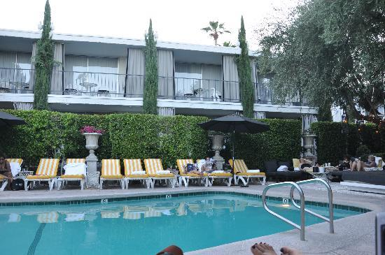 Pool picture of avalon hotel and bungalows palm springs for Viceroy palm springs restaurant