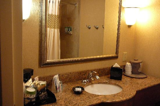 Hampton Inn & Suites Knoxville - Downtown: bathroom