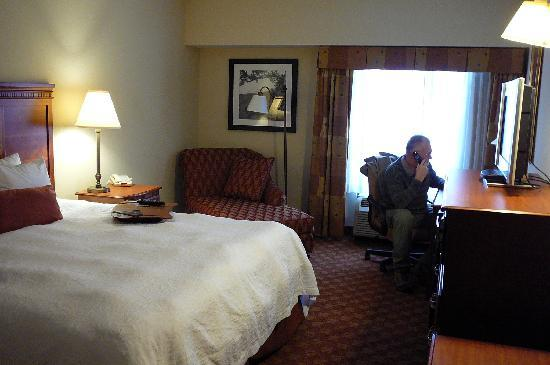 Hampton Inn & Suites Knoxville - Downtown: room