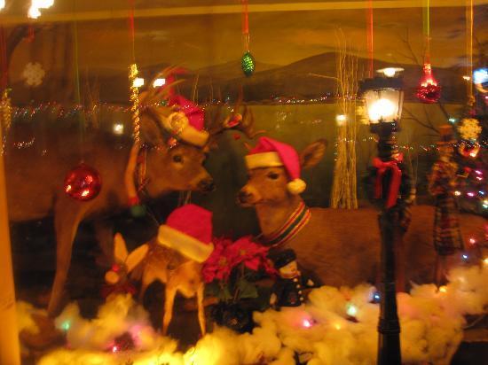 Deer Head Inn: Even the deer are in the spirit