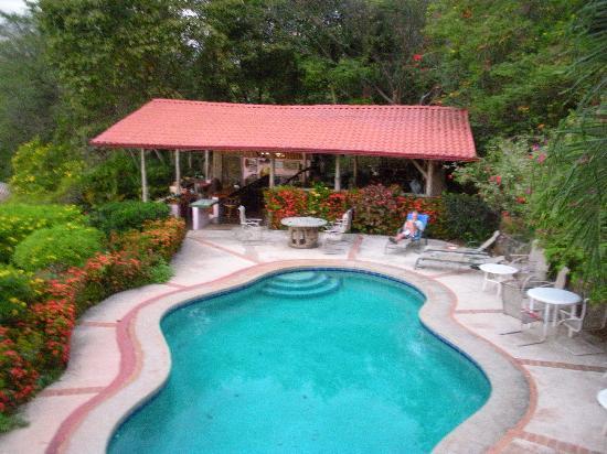 Rancho Armadillo Estate: Looking at the pool from my hamock