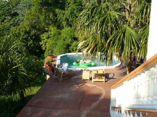 Villa Delfin Roatan: Plunge Pool