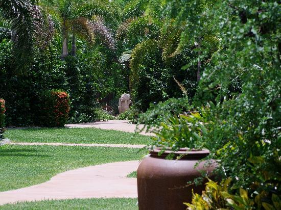 Cocos Beach Bungalows : Part of the gardens at Cocos Beach