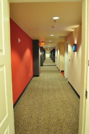ورلدمارك أناهيم: 14th floor hallway outside room