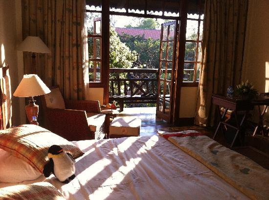 Victoria Angkor Resort & Spa: View of the room