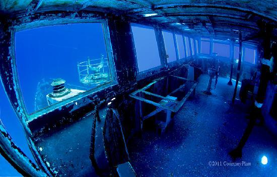 Kittiwake Shipwreck & Artificial Reef: Kittiwake Bridge