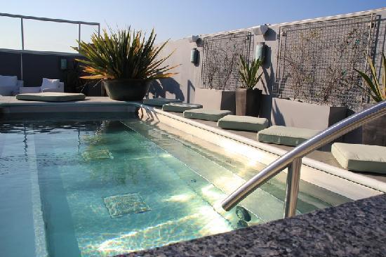 Shade Hotel: бассейн на крыше