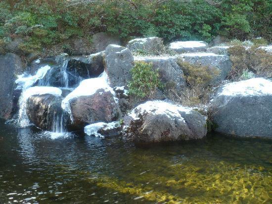 Hakone Yunohana Prince Hotel: Japanese garden