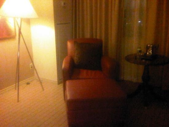 Sheraton Edison Hotel Raritan Center: chair