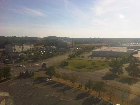 Sheraton Edison Hotel Raritan Center: view