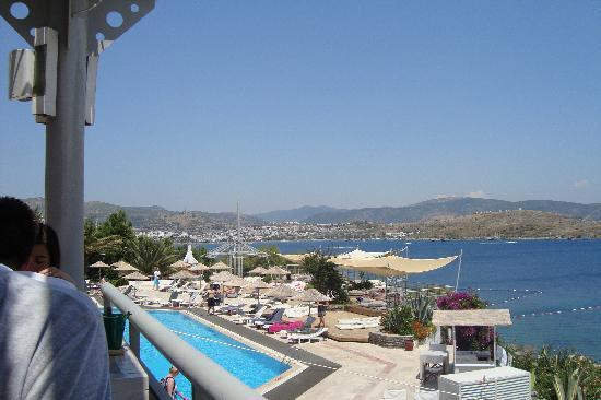 Fuga Fine Times: View of side pool