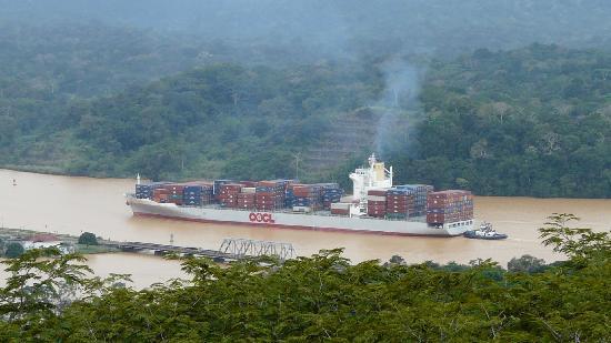 Gamboa Rainforest Resort: View from the tower