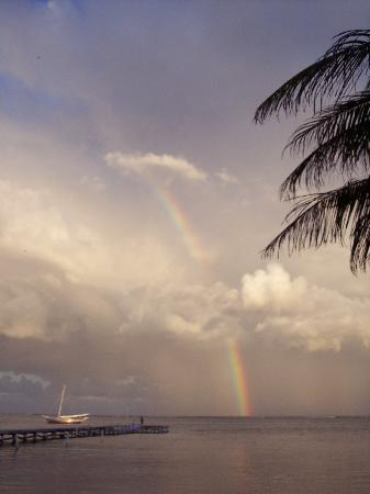 Belize Tradewinds Paradise Villas: Rainbow in front of condo