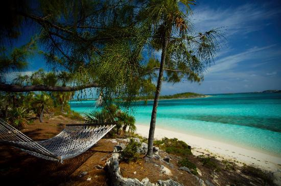 Fowl Cay Resort: Hammock By Birdcage