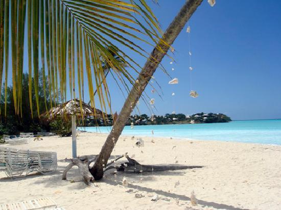 Jolly Villas : The local beach
