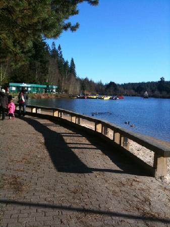 Center Parcs Longleat Forest: the beach/lake