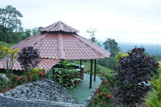 GreenLagoon Arenal Waterfall Villas: Poolside Tiki Bar & Grill