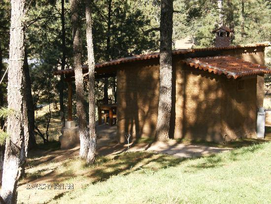 Cabanas Del Bosque: cabañas comdas y rodeads de bosque