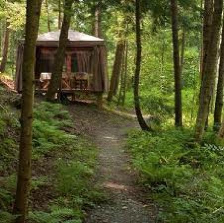 Spa Nordic Station: Massage en nature