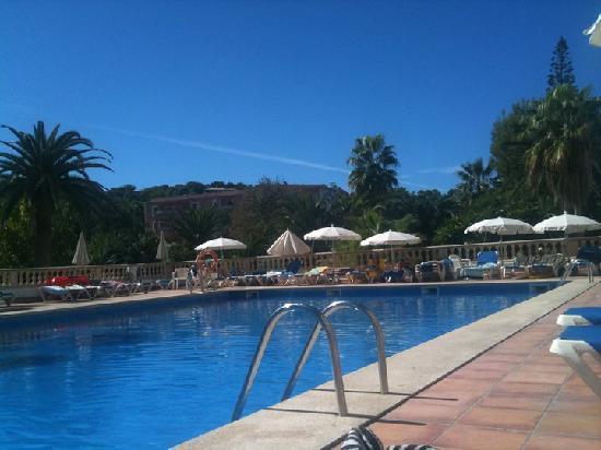 FERGUS Bermudas : view of the pool
