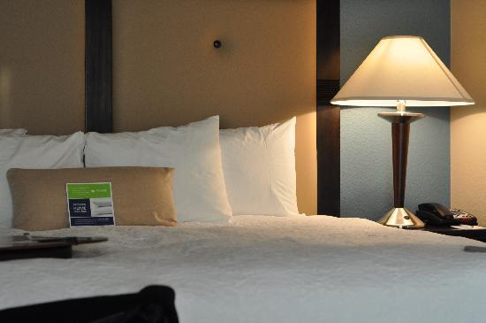 Hampton Inn and Suites Charlotte Airport: Hotel bed