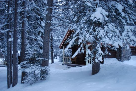 Storm Mountain Lodge & Cabins: Private logcabin