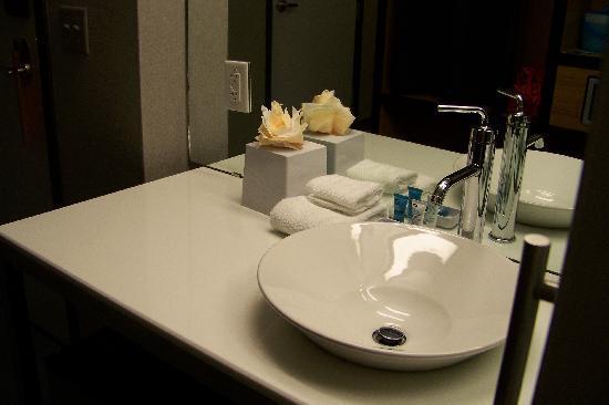 ألوفت سان أنطونيو ايربورت: sink area