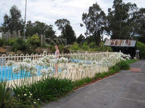 Gundagai, Australia: The pool