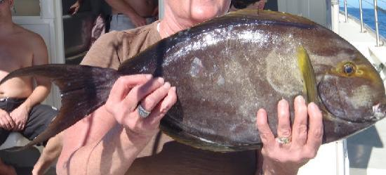 Haiku, HI: One of the larger fish we caught