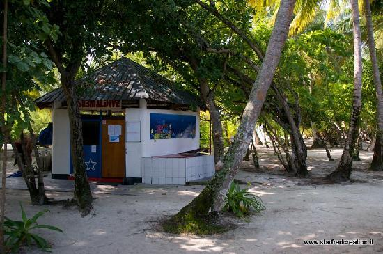 Asdu Sun Island: Diving SUBMALDIVE