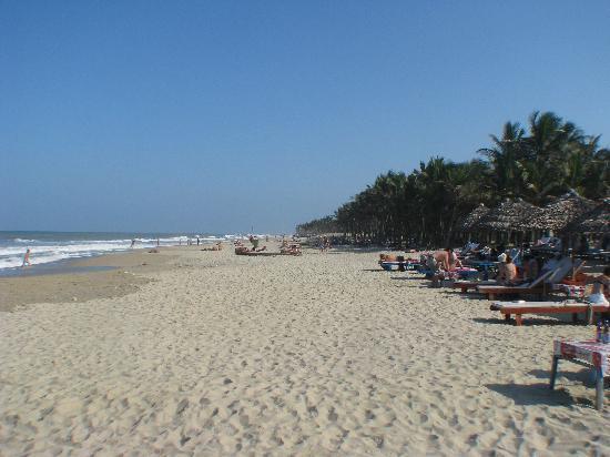 บีเทล การ์เด้น โฮมสเตย์ วิลลา: Cua Dai beach