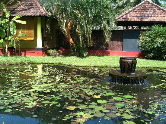 Vivanta by Taj - Kumarakom : water Bodies inside the hotel..at the bck of our Villa