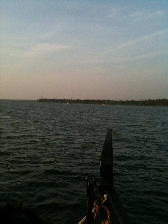 Vivanta by Taj - Kumarakom : Huge Vembanad Lake..Called Backwaters...India's 2nd Largest Lake