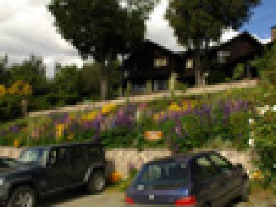 Hosteria Belvedere: Estacionamiento
