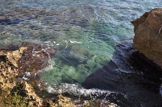 Baños Romanos De La Luisiana:Baños de la Reina: fotografía de Yacimiento Romano Baños de la