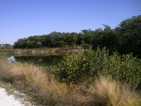 Robinson Nature Preserve : at preserve