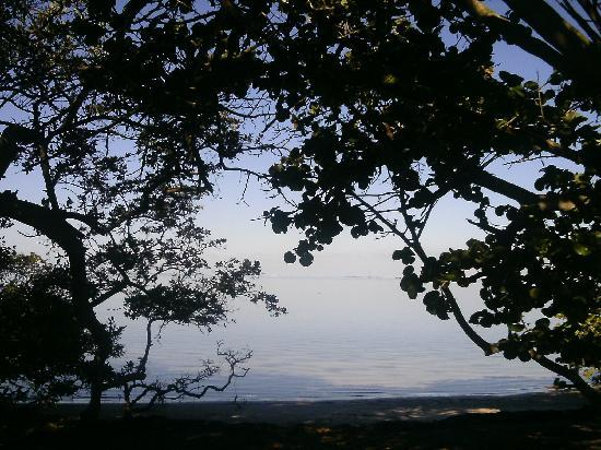 Robinson Nature Preserve: view at preserve