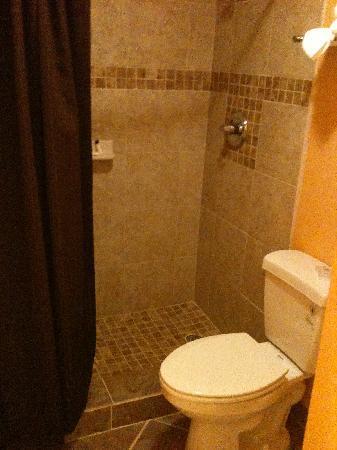 Best Western Post Oak Inn: restroom